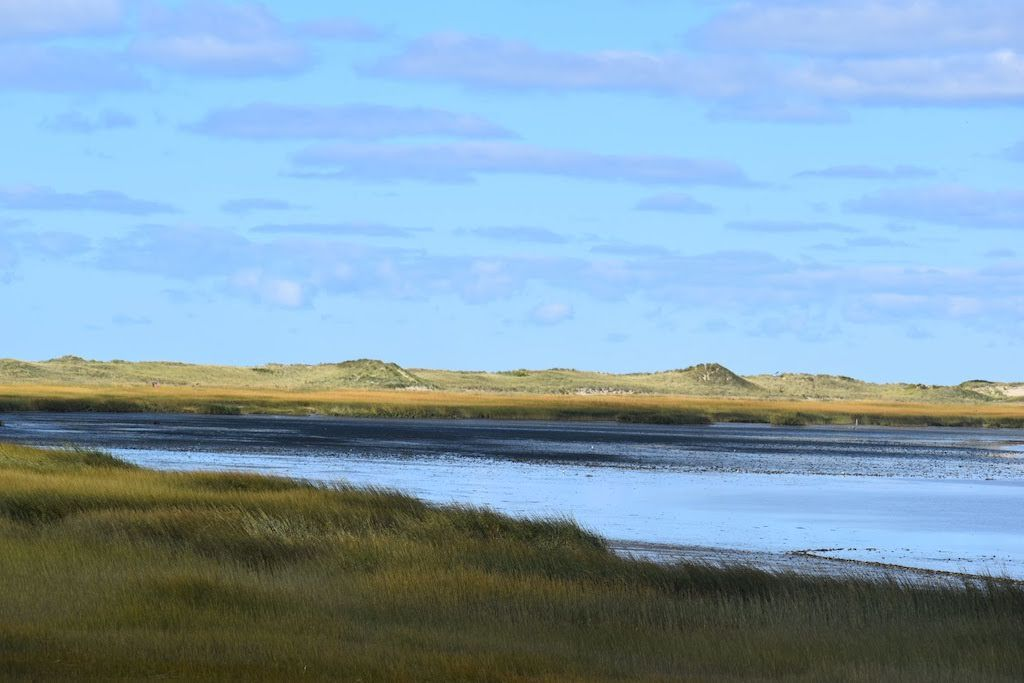 Cape Cod Hikes: Great Island