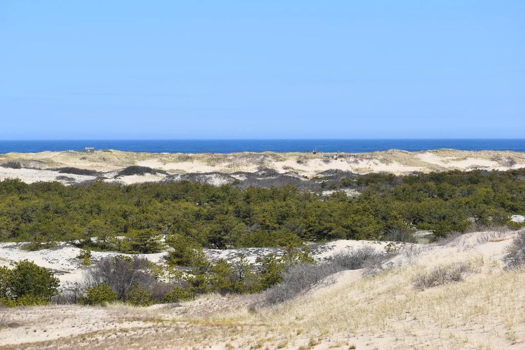 Cape Cod Hikes: Dune Shack Trail