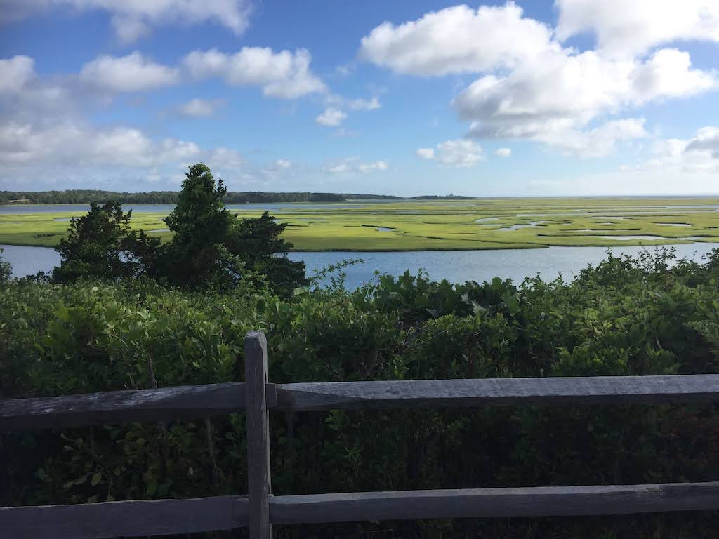 Cape Cod Hikes: Fort Hill